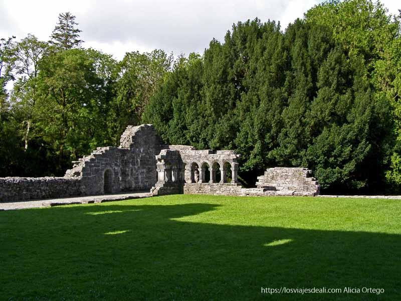 jardín de la abadía de Cong
