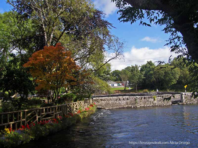 puente de piedra y árboles con colores otoñales en Cong Irlanda