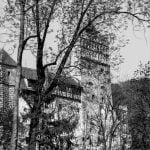 castillo de bran tras ramas de árboles
