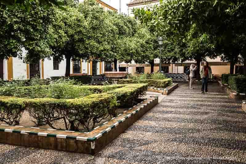 plaza con naranjos y fuente en el barrio santa cruz planes en sevilla