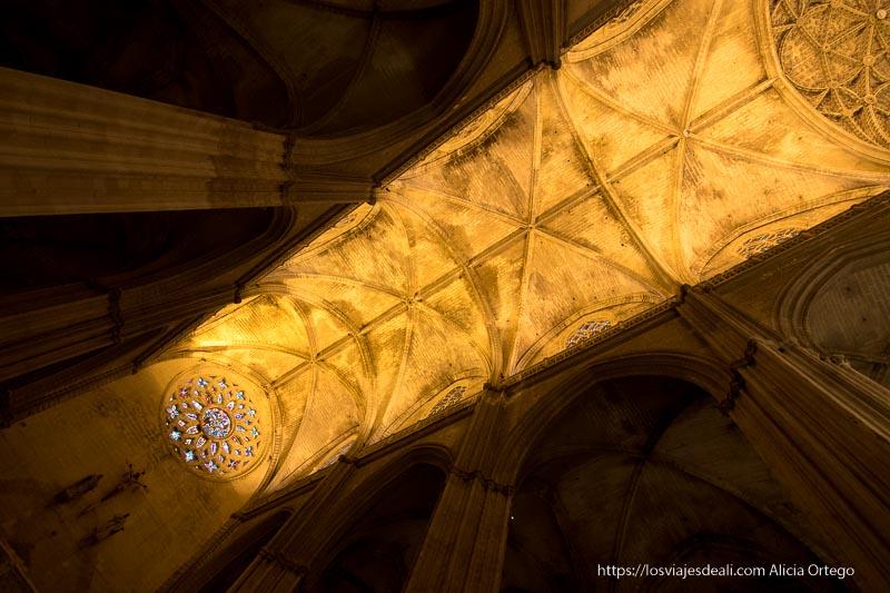 techo de la catedral de sevilla con rosetón de vidrieras planes en sevilla