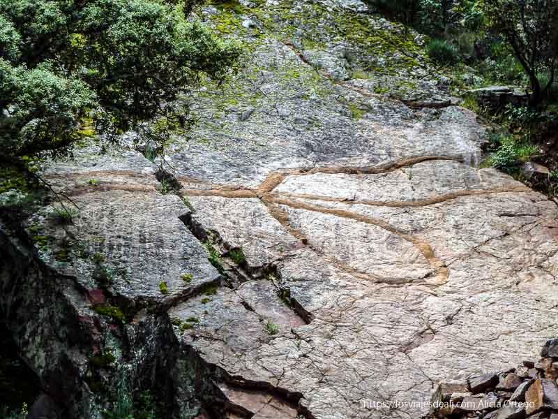 fósil gigante en la roca con forma de gusano en forma de lazo en la ruta del boquerón de estena