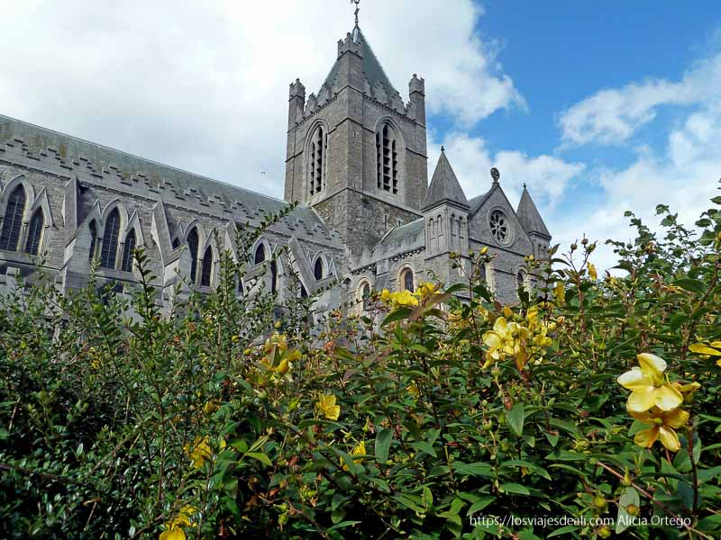 Christ church cathedral de dublin