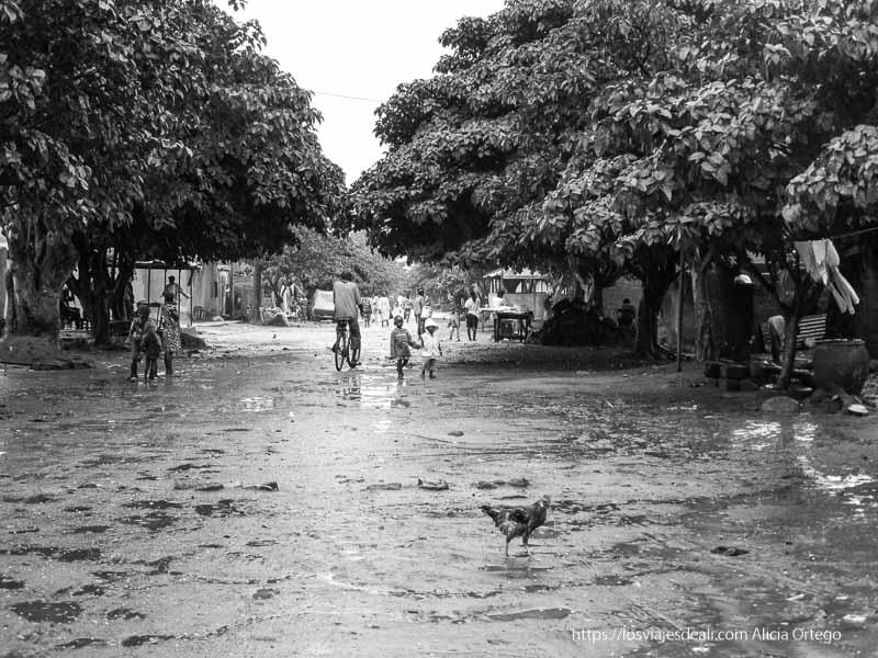calle de bobo dioulasso con gallina y niños