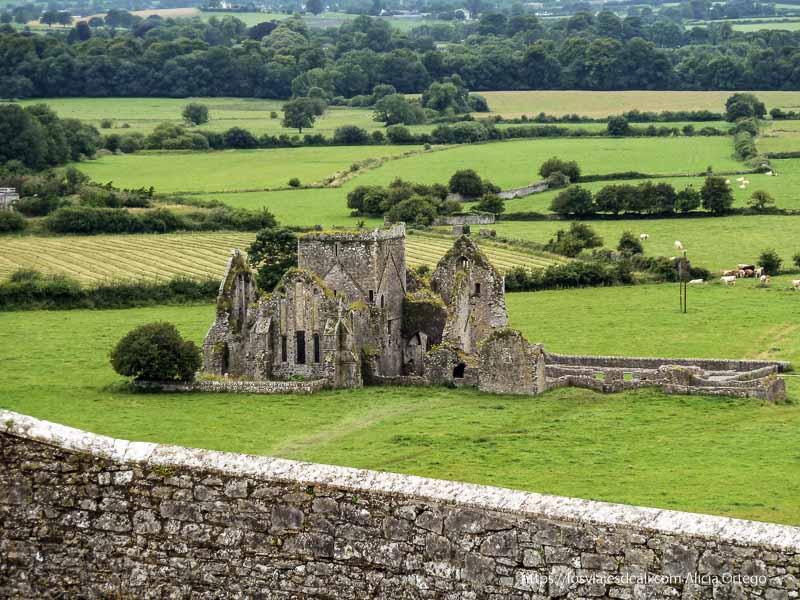 abadía desde rock of cashel castillos primeras impresiones de irlanda