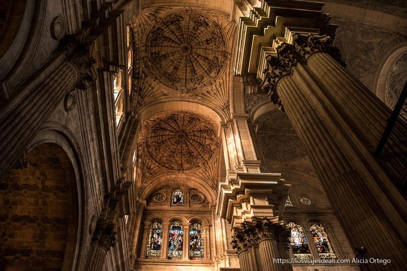 techos y columnas enormes en el interior de la catedral centro de málaga