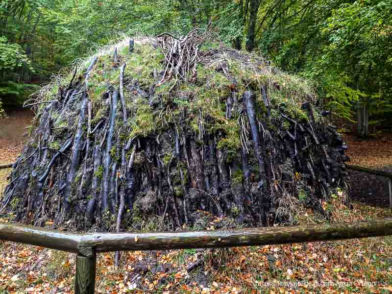 carbonera del hayedo de tejera negra