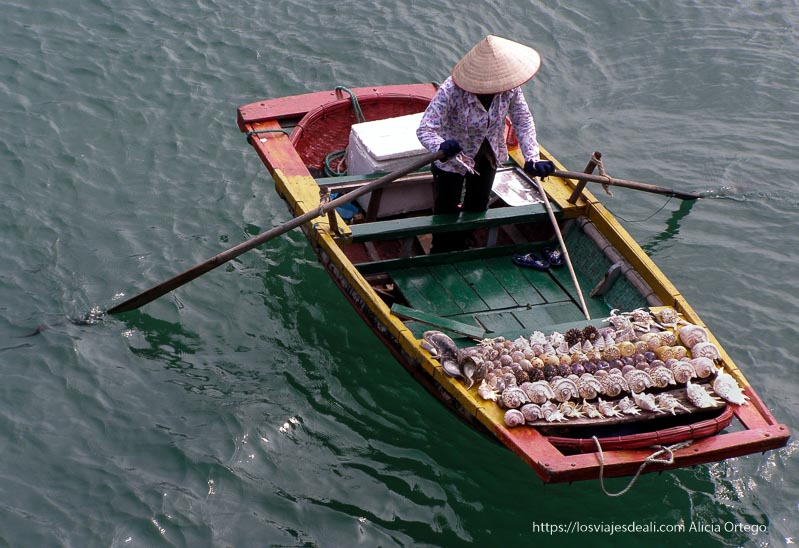 vendedora de conchas en barquita de colores con sombrero vietnamita