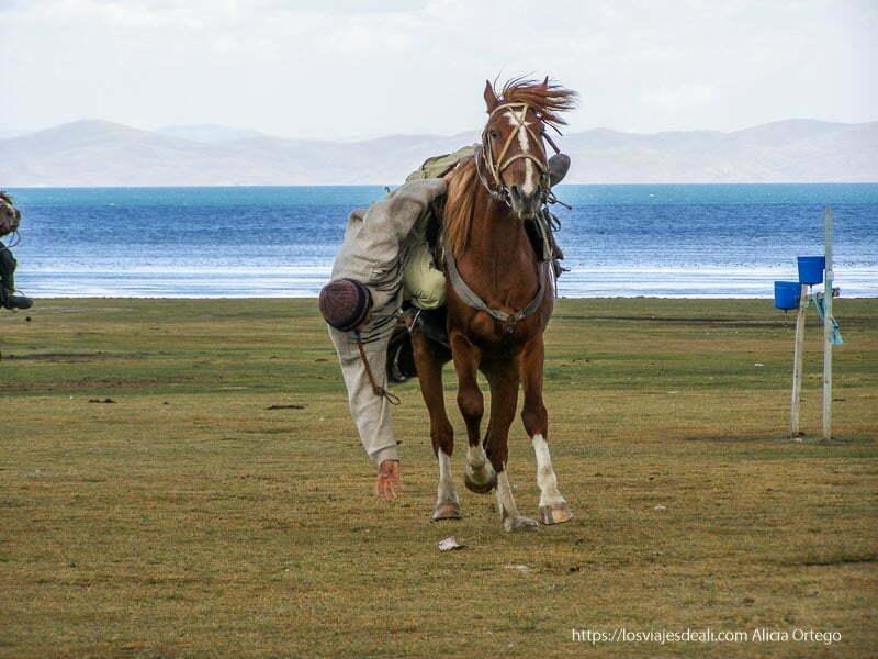 jinete kirguis con caballo al galope agachándose para coger billete del suelo en el lago song kol