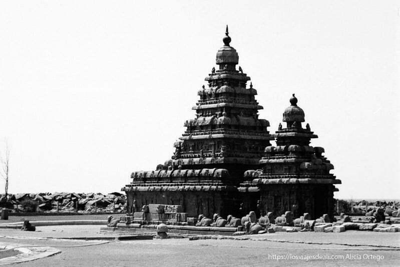 templo de mamallapuram tamil nadu