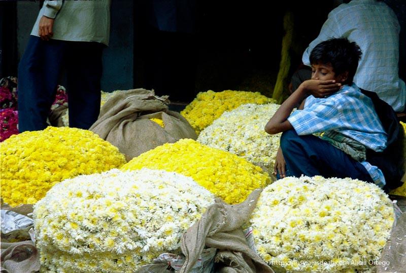 puesto de flores con niño vendedor en mercado de mysore