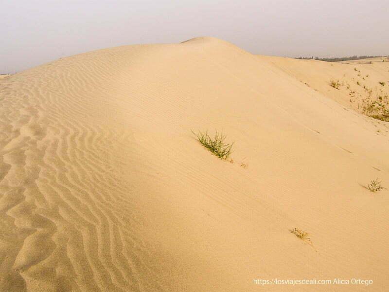 dunas al atardecer oasis de yarkand