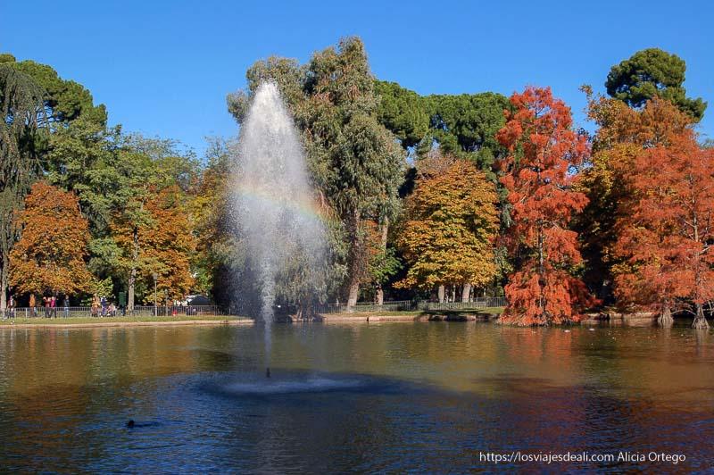 fuente del estanque con arco iris y árboles rojos detrás en el palacio de cristal de el retiro