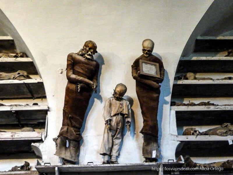dos momias de adulto y un niño en las catacumbas de los capuchinos de palermo desconocido