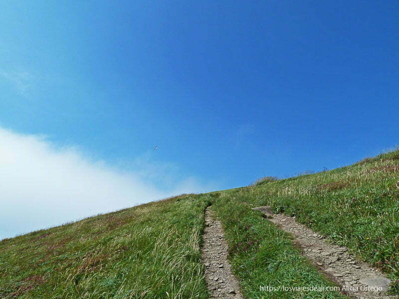 camino de hierba hacia cielo azul península de dingle