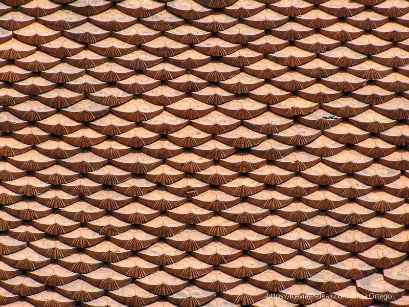 tejas típicas vietnamitas qué ver en hanoi