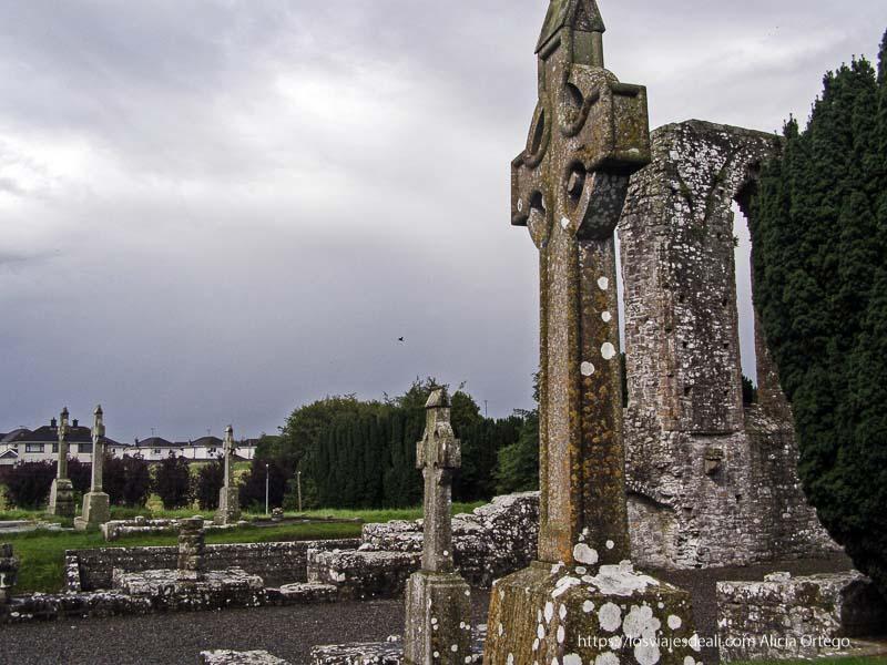cementerio irlandés Trim