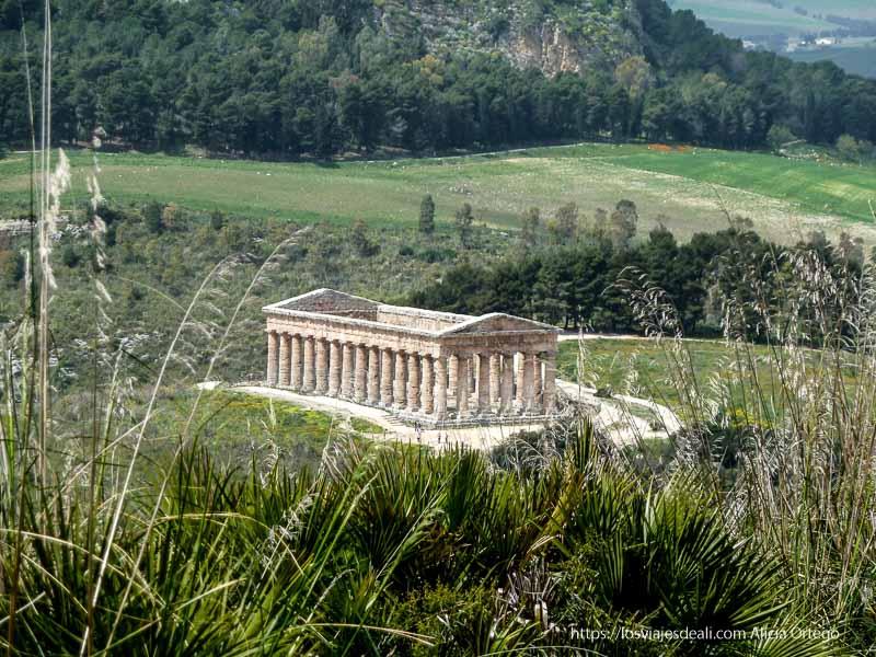templo del yacimiento de segesta en medio del campo