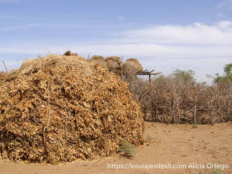 casa de la tribu dasanech con cubierta de ramas y hojas secas. Detrás se ven los graneros sobre estructuras de madera en alto