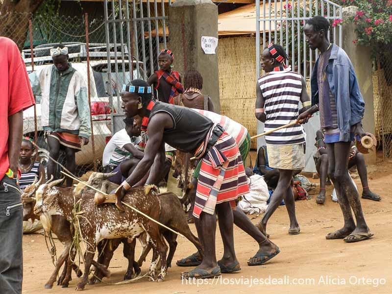 hombre llevando tres cabras mercados del sur etíope