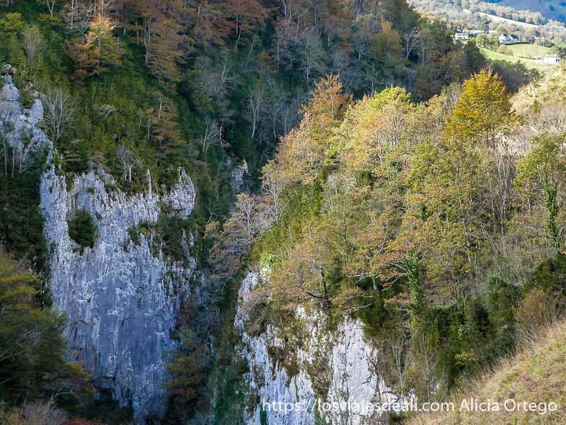 cortados de roca y árboles con colores amarillos y rojos en pirineo navarro