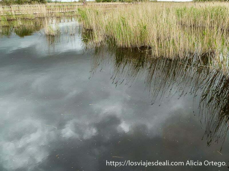 nubes reflejadas en el agua tablas de daimiel