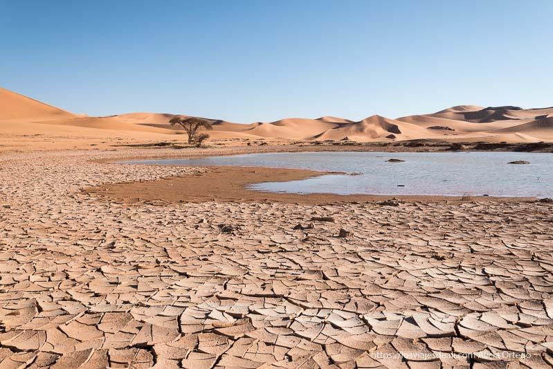 lago natural con suelo seco delante paisajes del sahara