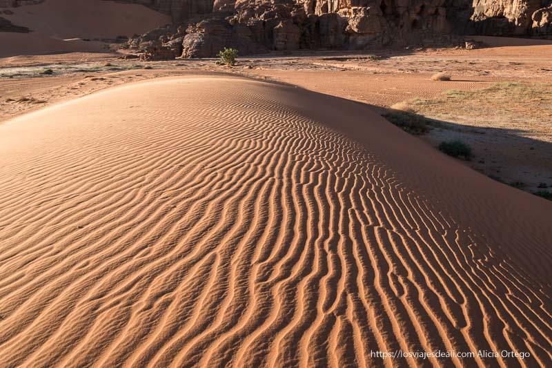 duna con dibujo de rayas formadas por el viento paisajes del sahara