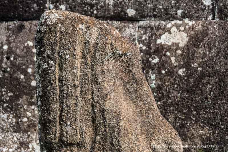 perfil de cabeza de moai tours en isla de pascua