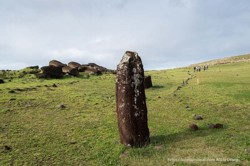 moai femenino tours en isla de pascua