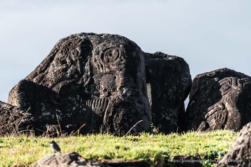 petroglifos de orongo tours en isla de pascua