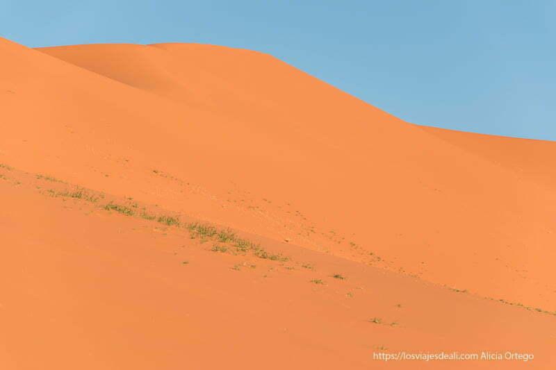 duna de tin merzouga de intenso color naranja paisajes del sahara