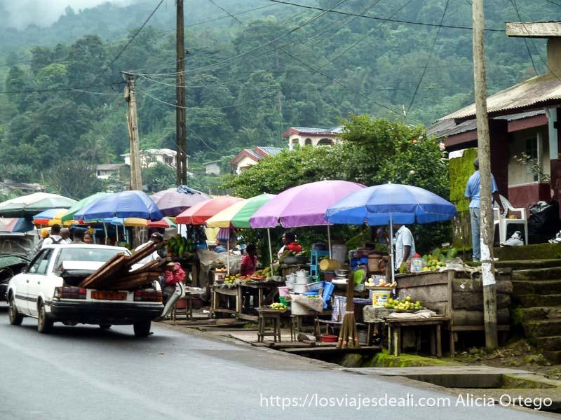 calle con puestos de fruta protegidos por sombrillas de colores y de fondo la vegetación en buea