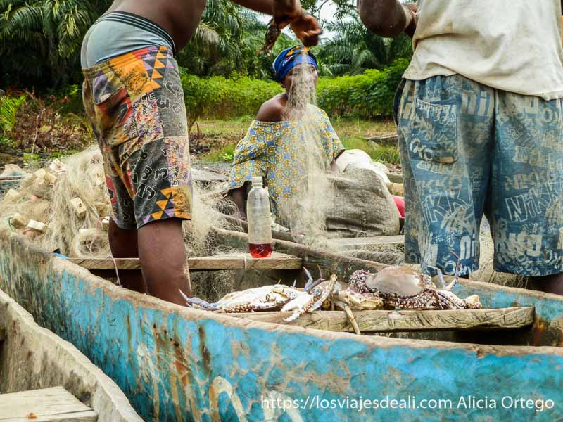 pescadores desenredando cangrejos de las redes en camerún