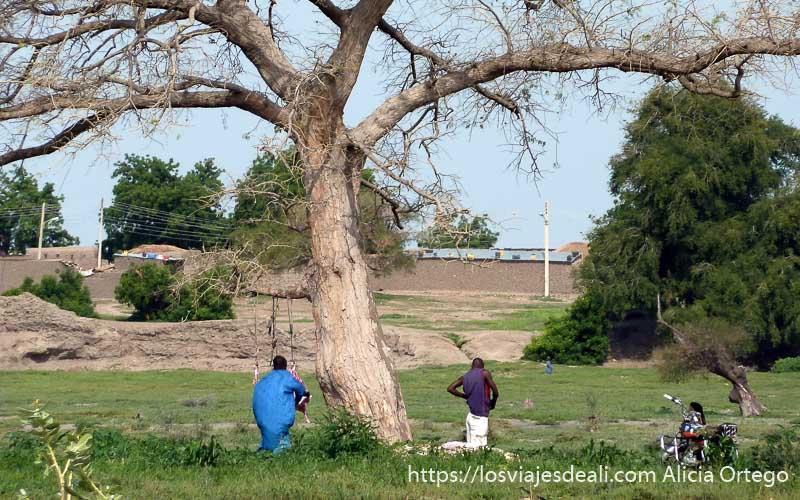árbol seco debajo un hombre corta un cordero colgado