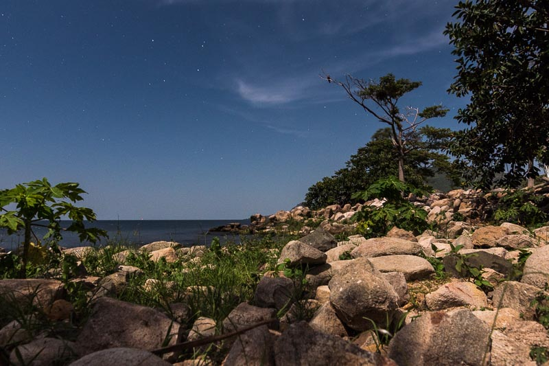 foto nocturna de orilla de piedras y árboles con estrellas lago victoria