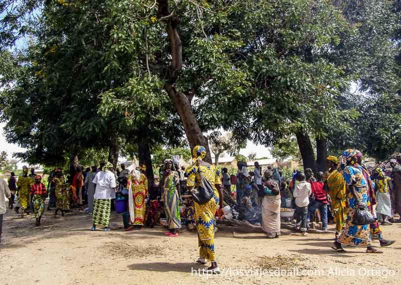 gente bajo grandes árboles mercado de tourou