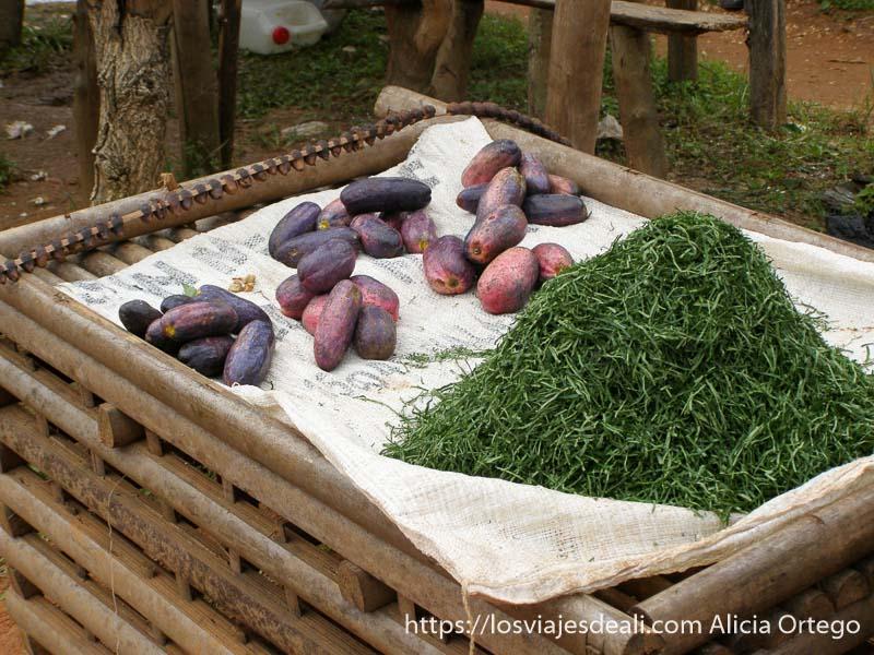 puesto que vende fruta rara y hierbas en bafut montes bamileké