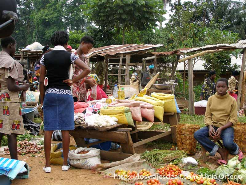 escena de mercado con puestos de tomates y arroz montes bamileké