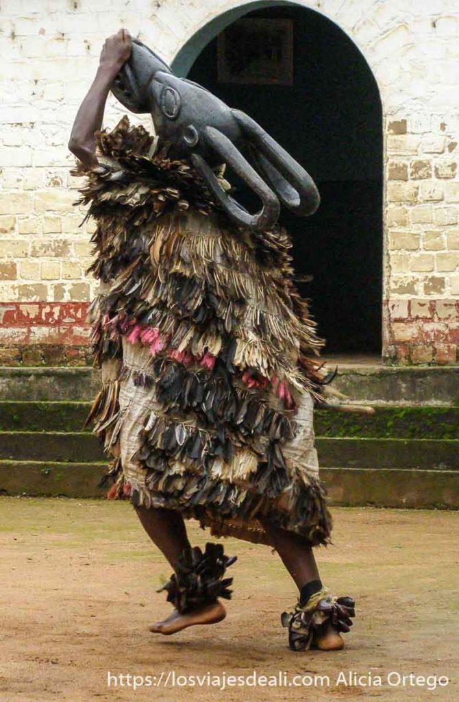 bailarín del reino de bafut con traje de plumas y máscara de madera en la cabeza