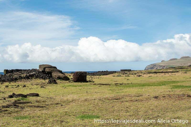 moai tumbado sobre la hierba junto a la costa tours en isla de pascua