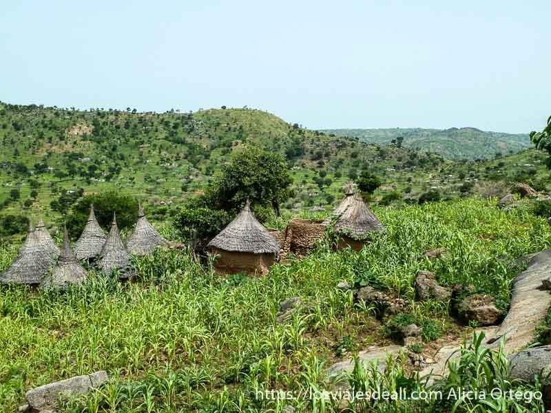 chozas con tejado de paja en forma de cono entre campos de maíz trekking en el monte ziver