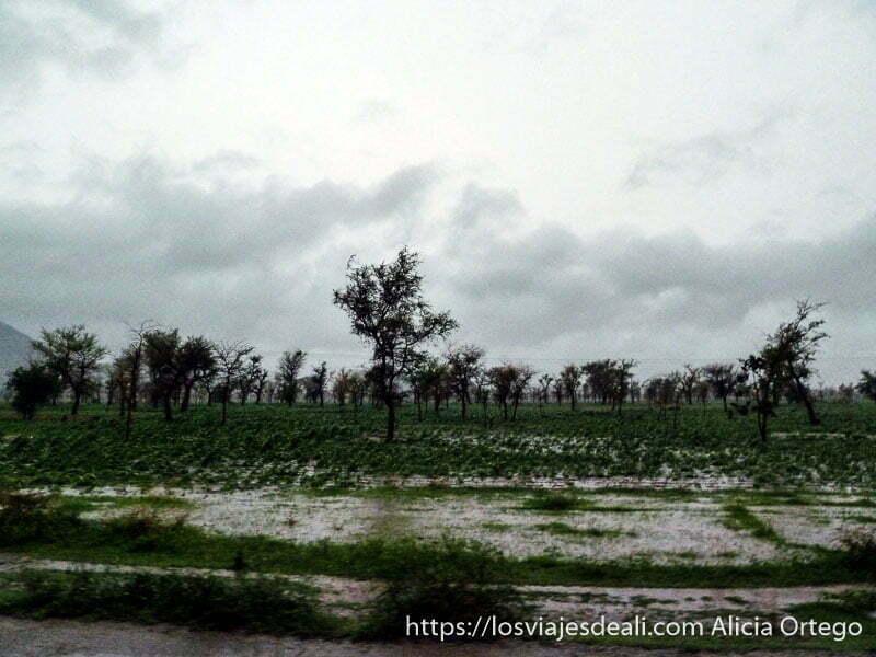 tormenta monzónica con campos encharcados trekking en los montes mandara de camerún