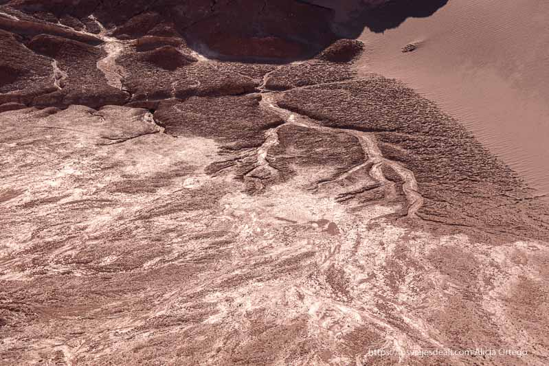 rastro de lluvia formando como ramas de árbol en el suelo de arena y sal del valle de la luna en atacama