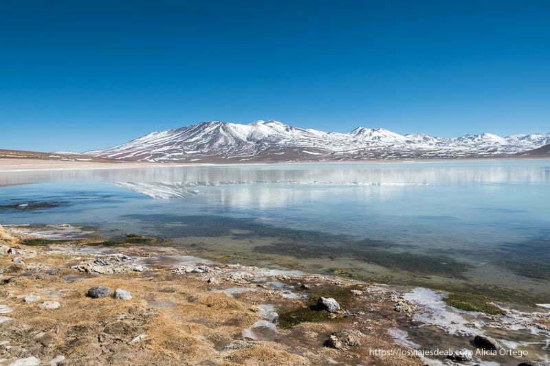 laguna blanca con volcán nevado reflejándose en el agua