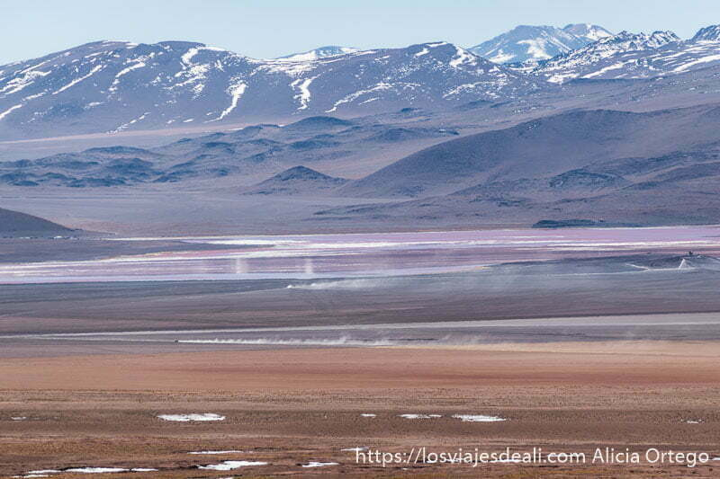 laguna colorada de lejos con estelas de polvo de coches y remolinos y volcanes con nieve al fondo en bolivia