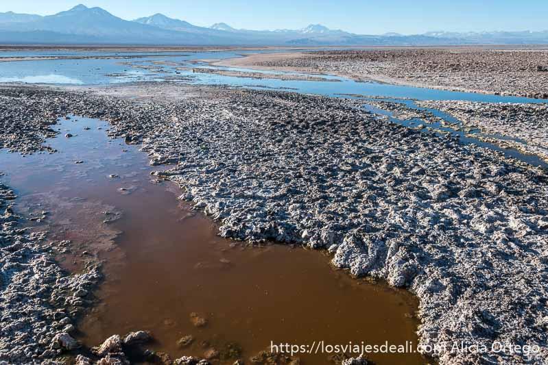 agua de color rojo entre placas de sal con volcanes al fondo en el salar de atacama