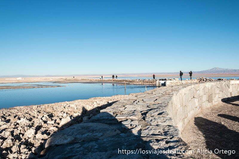 visitantes caminando por camino de laguna chaxa en salar de atacama