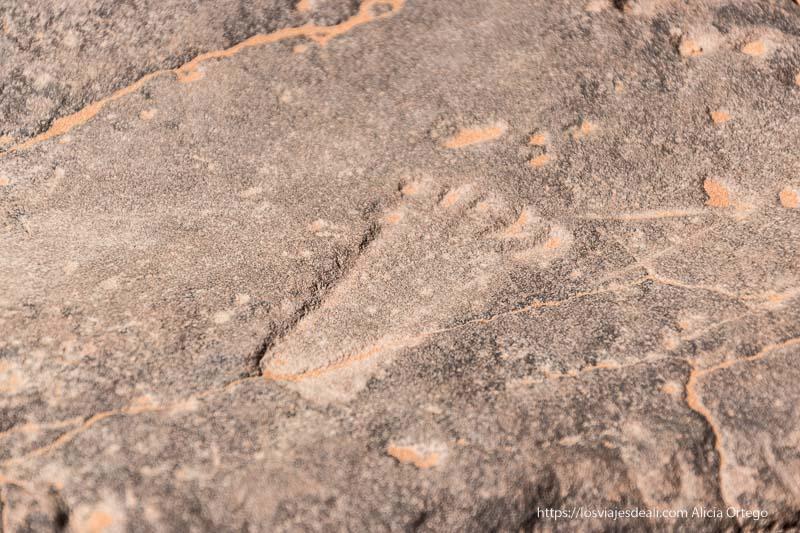 grabado de la planta de un pie infantil en el tassili