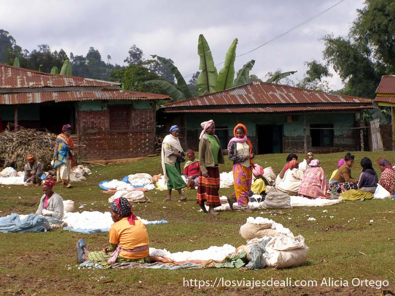 mujeres vendiendo algodón en el mercado de la tribu dorze